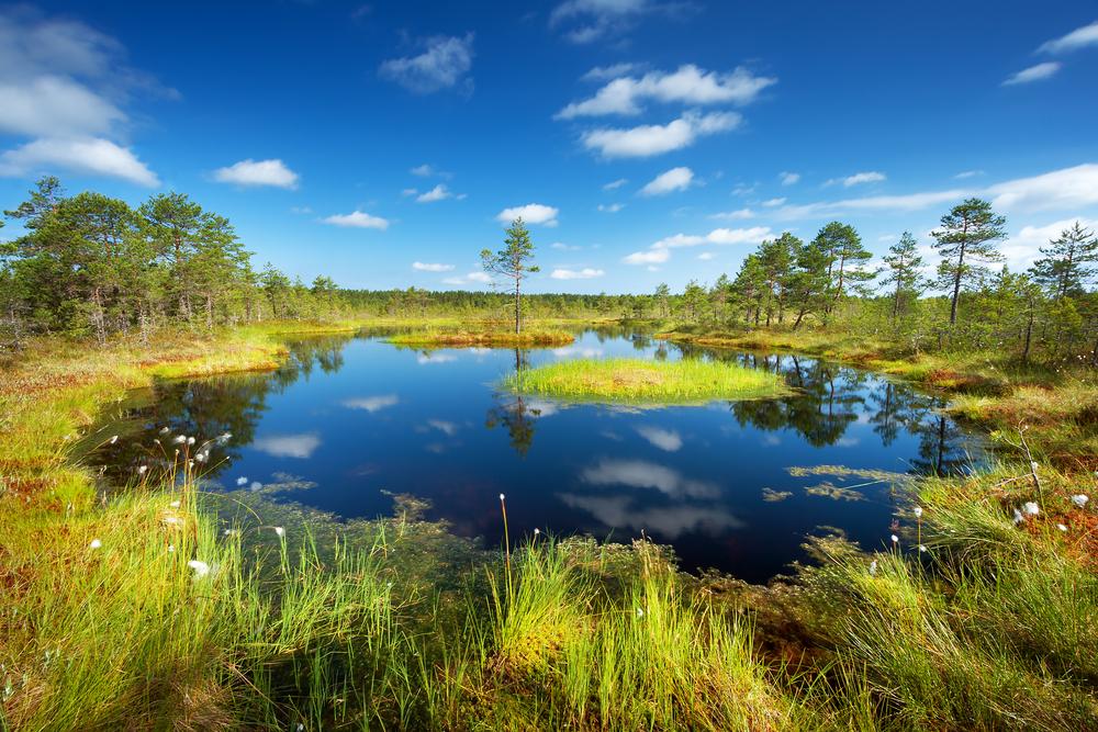 Estonia Natural Wonders